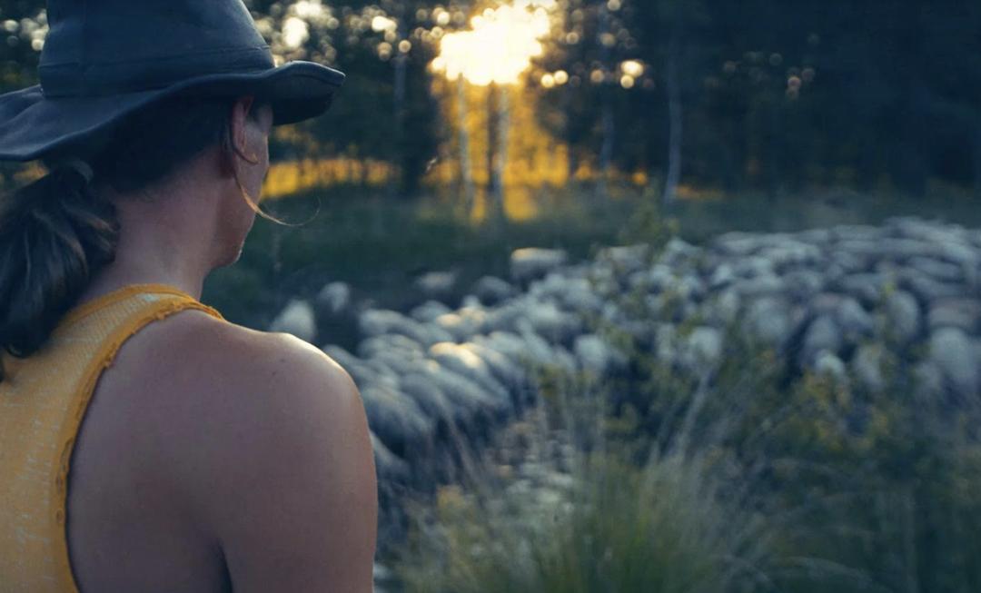 Kijktip: IDFA documentaire 'Sheep Hero'