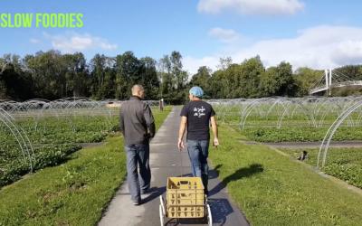 Videoportret Alliantie chef: Roland Vrijmoet