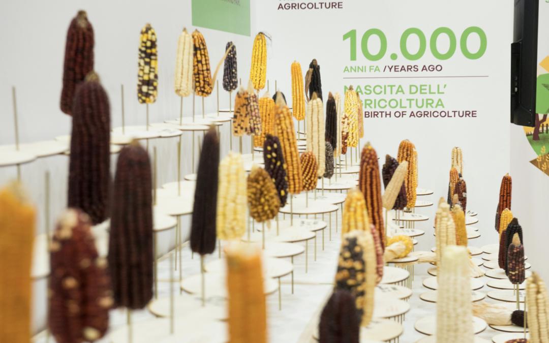 Hoe kunnen we ons voeden in het Antropoceen?