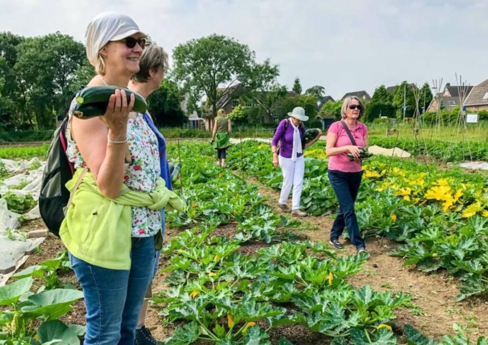 De beste lokale tips van Slow Food Rijnzoet