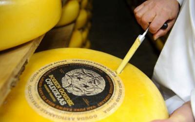 Ontdek de Ark van de Smaak in augustus: Boeren Goudse Oplegkaas
