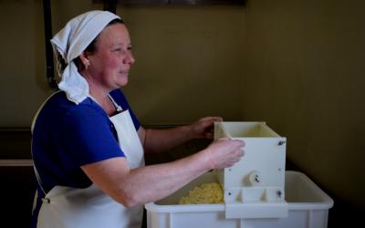 #kieslokaal on tour: witflora kaas uit Zevenaar