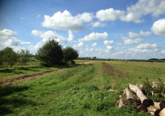 Actie behoud Lutkemeerpolder & zorgboerderij de Boterbloem
