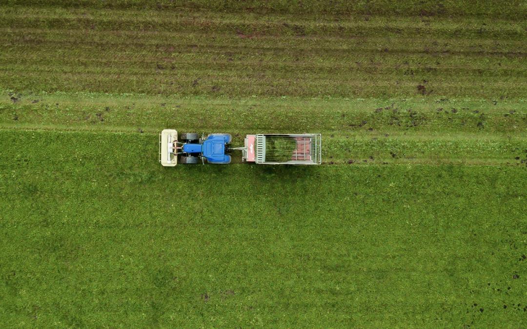 Voedselproductie moet eerder robuust dan efficiënt zijn