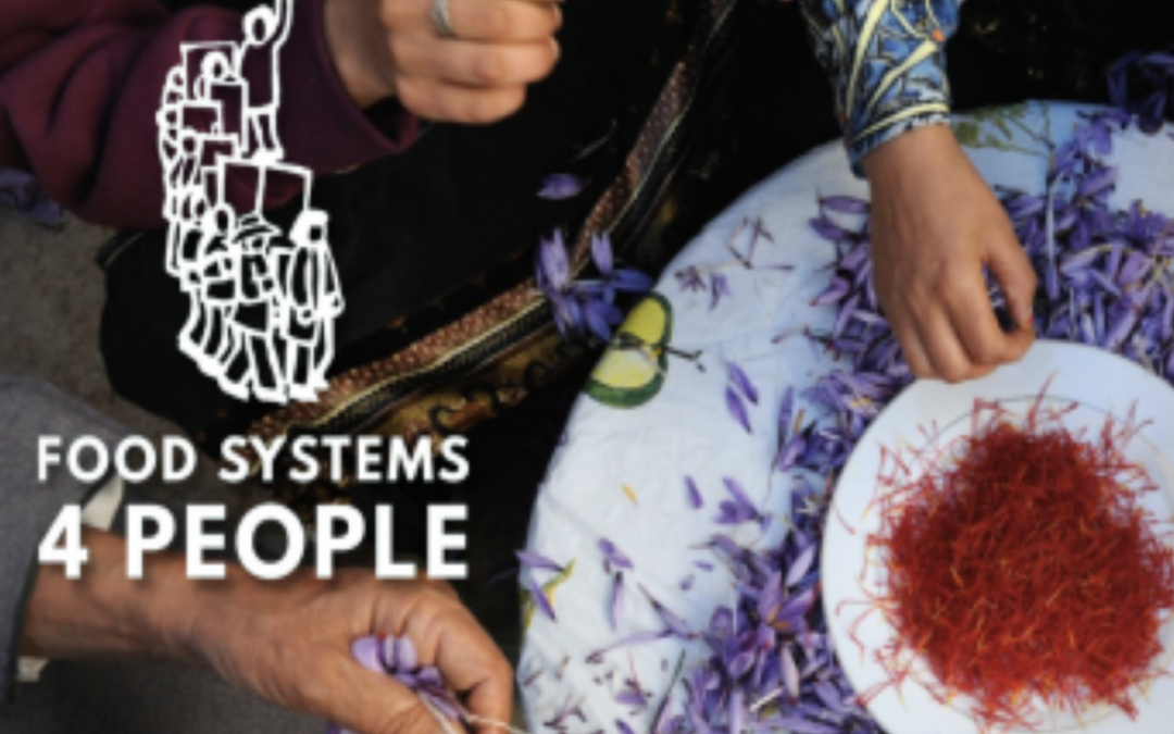 HUNDREDS OF GRASSROOTS ORGANIZATIONS TO OPPOSE UN FOOD SYSTEMS SUMMIT