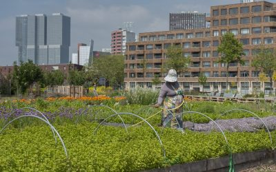 Rondleiding en borrel bij Rotterdamse Munt