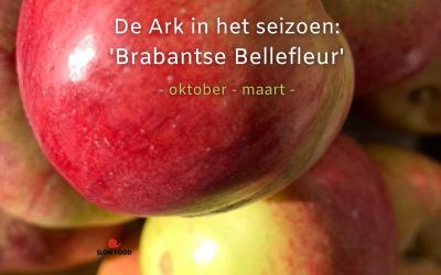 DE ARK IN HET SEIZOEN: BRABANTSE BELLEFLEUR (OKTOBER – MAART)